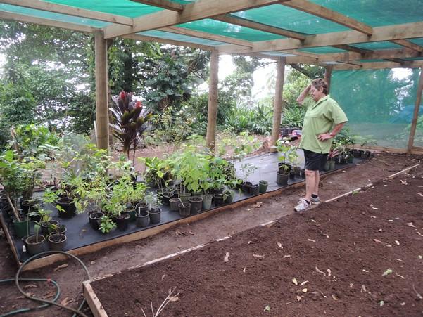 The Project In Pitcairn Initiative Des Territoires Pour La Gestion Regionale De L Environnement